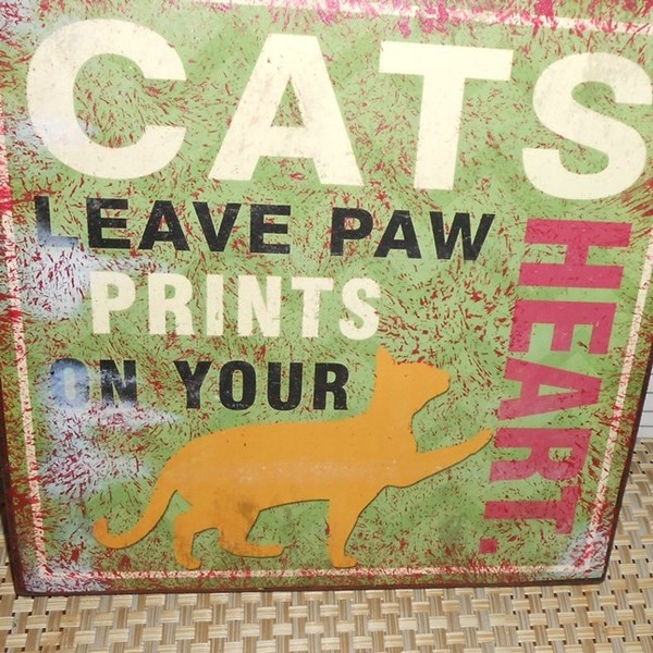 Cats_Leave_Paw_Prints